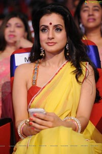 Ameesha Patel in Saree