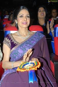 Sridevi at TSR-TV9 2011-2012 National Awards