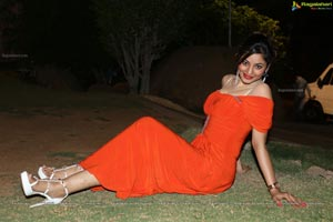 Green Signal Shilpi Sharma Hot Photos