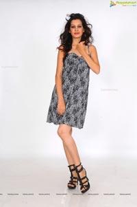 Diksha Panth Ragalahari Photos