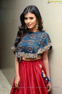 Actress Hebah Patel