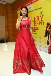 Nilofer Haidry HD Photos