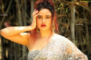 Sony Charishta in Stylish Gray Net Saree