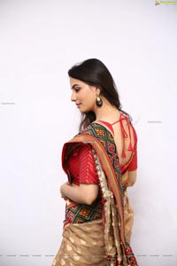 Tejal Tammali Gorgeous Stills in Silk Saree