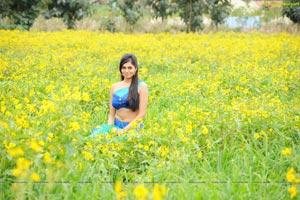 Deepa Sannidhi High Definition Wallpapers