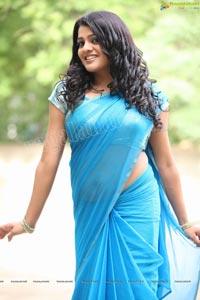 Beautiful Tashu Kaushik in Blue Saree