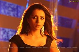 Trisha in Dammu