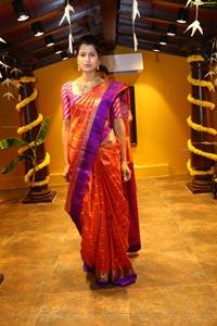 Amitha in Saree