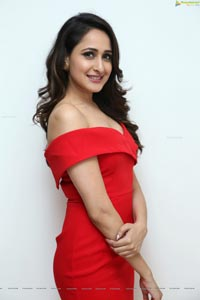 Pragya Jaiswal at SIIMA 7th Edition Curtain Raiser