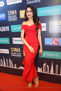 Pragya Jaiswal at SIIMA 7th Edition Curtain Raiser