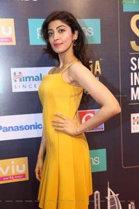 Pranitha Subhash at SIIMA 7th Edition Curtain Raiser