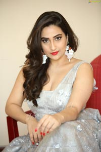 Anchor Manjusha at SIIMA 2019
