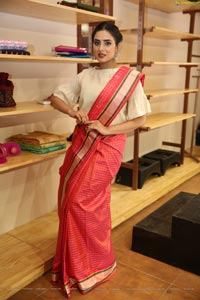 Nikitha Chaturvedi Wearing Handloom Dress