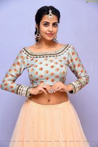 Sasha Singh at Edaina Jaragochu Pre-Release