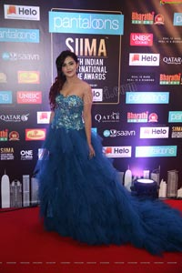 Malvika Sharma at SIIMA 2019