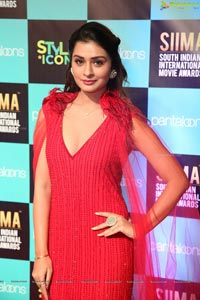 Payal Rajput at SIIMA 2019