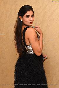 Indu Kusuma at Raja Raja Chora Movie Pre- Release Event