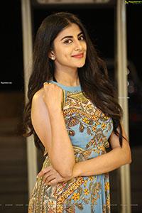 Shweta Avasthi at Merise Merise Movie Pre- Release Event
