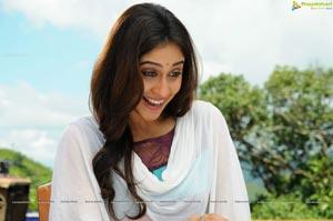 Regina Cassandra in Telugu Film Shaurya