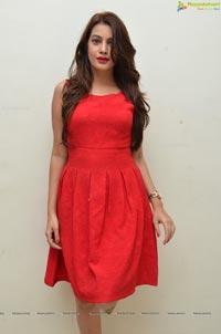 Diksha Panth Photos