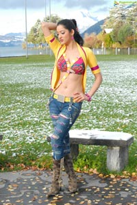 Richa Panai Hot Photos