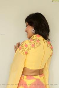 Dhanya Balakrishna at AOAO Press Meet