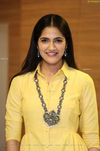 Simran Choudhary at Stalin Pre-Release Event