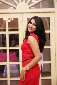 Supraja Reddy at Country Club Billionaire 2020 Launch