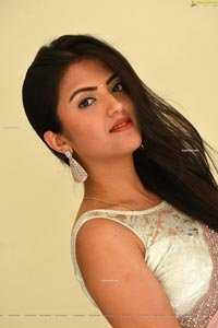 Bhawna Choudhary at Software Blues Movie Press Meet