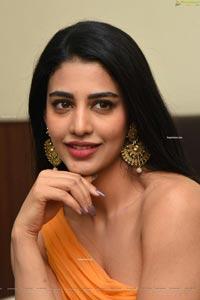 Daksha Nagarkar at Zombie Reddy Movie Pre-Release Event, HD