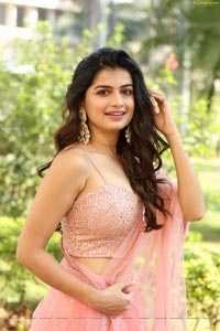 Hemal Ingle at Power Play Movie Teaser Launch