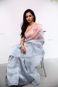 Kamakshi Bhaskarla In Silver Gray Saree