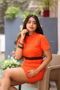 Rittika Chakraborthy at Bomma Adirindi Interview