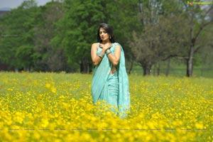 Anushka Damarukam Nesthama Nesthama