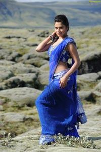 Hot Amala Paul in Nayak