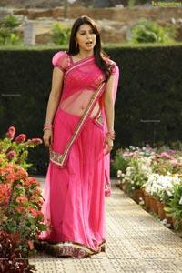Bhumika in Hot Pink Saree
