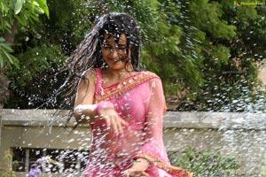 Trisha in Pink Saree
