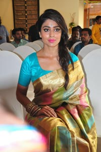 Shriya Saran in Saree
