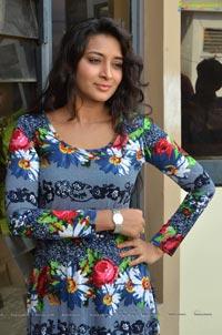 Bhanu Sri Heroine