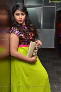 Jyothi at Dictator Audio Success Meet