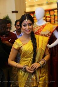 Shriya Saran in Yellow Saree