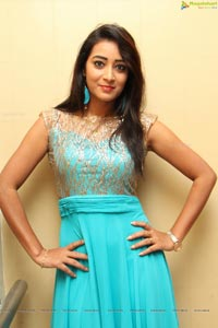 Bhanu Triparthi at D'sire Exhibition