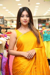Anu Emmanuel in Yellow Saree