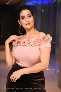 Manjusha at Disco Raja Movie Success Meet