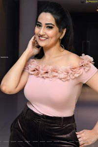 Manjusha at Disco Raja Movie Success Meet