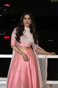 Nabha Natesh at Disco Raja Pre-Release Event