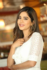 Nabha Natesh at Disco Raja Interview