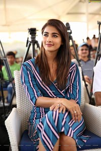 Pooja Hegde at Cancer Crusaders Invitation Cup Announcement