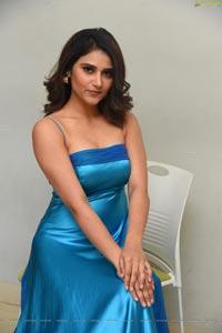Priya Singh at My South Diva Calendar 2020 Launch