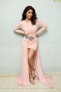 Shriya Saran at My South Diva Calendar 2020 Launch